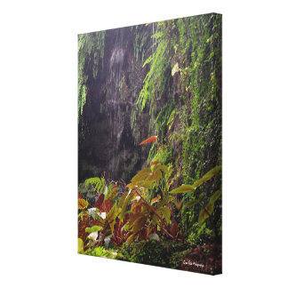 Tropisk vattenfall canvastryck
