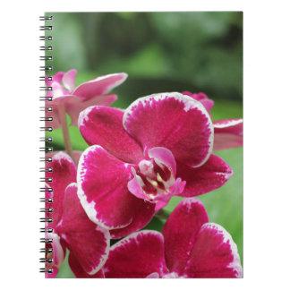 Tropiska blommor och Orchidsanteckningsbok Anteckningsbok