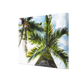 Tropiska palmträd canvastryck