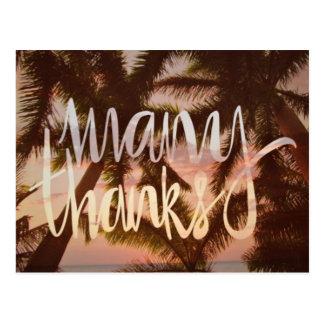 Tropiska palmträdtackkort vykort