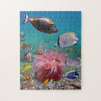 Tropiskt fiskpussel pussel