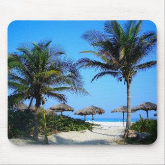 Tropiskt paradis Mousepad för palmträdhavstrand Mus Matta