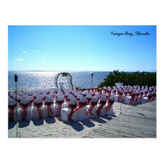 Tropiskt Tampa Bay Florida strandbröllop Vykort
