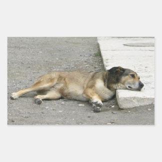 Trött hundklistermärkear, skräddarsy rektangulärt klistermärke