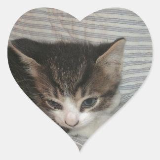Trött kattunge hjärtformat klistermärke