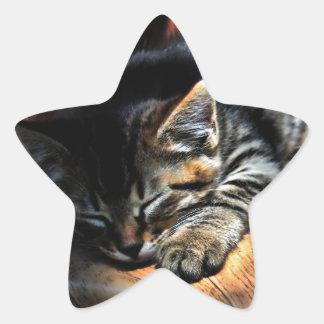 Trött Stjärnformat Klistermärke