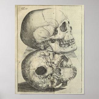 Tryck 1616 för vintagedöskallaranatomi poster