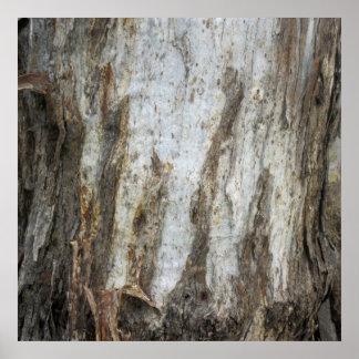 Tryck 5 för trädskällmönster affisch