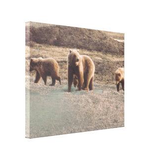 Tryck för foto för Alaska TundraGrizzlies designat