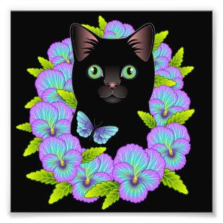Tryck för svart Pansy för katt för lycka till Fototryck
