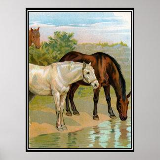Tryck för vintage för två hästar Retro