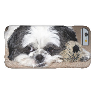 Tuckered ut Shih Tzu Barely There iPhone 6 Skal