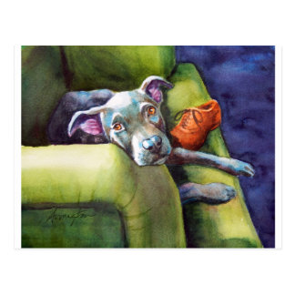 Tuggningen skor, terrieren på soffan vykort