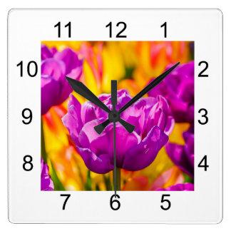 Tulpan som tjusar violeten fyrkantig klocka