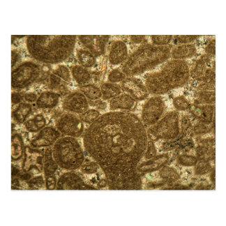Tunt dela upp av Paleozoic limestone under micren Vykort