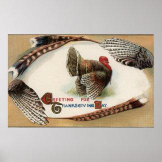 Turkiet fjädrar print