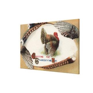 Turkiet fjädrar canvastryck