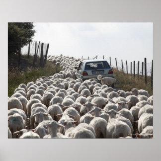 tuscany jordbruksmarkväg, bil som blockeras av poster