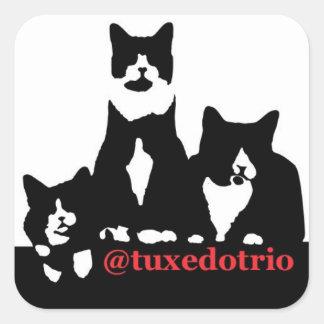 TuxedoTrio kvadrerar Fyrkantigt Klistermärke