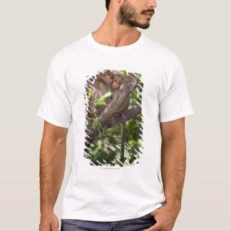 Två apor i ett träd t-shirts