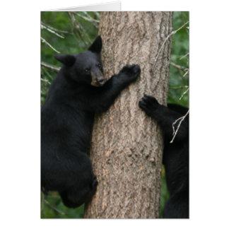 två björnar i ett träd hälsningskort