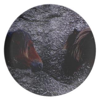 Två Darmoor ponnyer som beskyddar benbacken, Tallrik