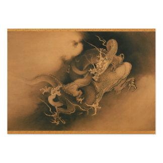 Två drakar i molnvintage set av breda visitkort