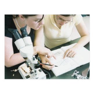 Två flickor med mikroskopet vykort
