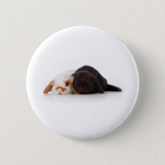 Två gulliga bebiskaniner standard knapp rund 5.7 cm