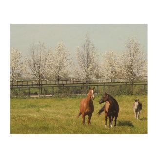 Två hästar och en åsna som betar i vår trätavla