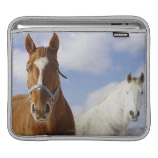 Två hästar sleeve för iPads
