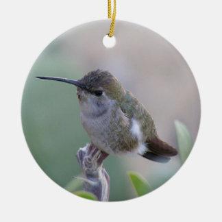 Två Hummingbirds Julgransprydnad Keramik