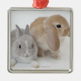 Två kaniner. Netherland dvärg och Holland Lop. Julgransprydnad Metall
