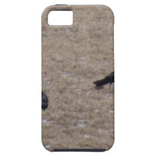 Två kråkor tough iPhone 5 fodral