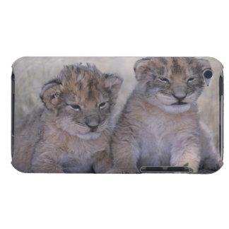 Två lejona ungar iPod touch skydd