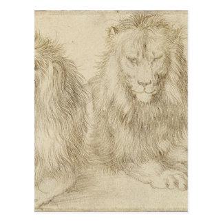 Två placerade lejon av Albrecht Durer Vykort