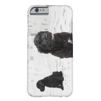 Två portugisiska vattenhundvalpar i ett rum barely there iPhone 6 fodral