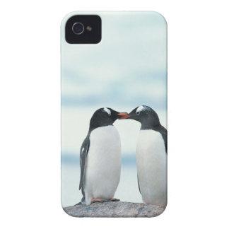 Två röra näbbar för pingvin iPhone 4 cover