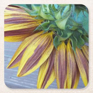 Två tonar den Head blommigten för solrosen Underlägg Papper Kvadrat