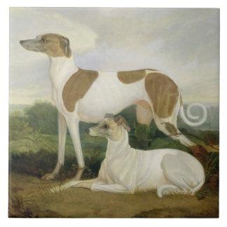Två vinthundar i en landskap (olja på kanfas) kakelplatta