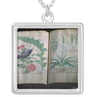 Två visa för sidor som är rosa, och vitlök silverpläterat halsband