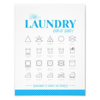 Tvättstugafusklakan Fototryck