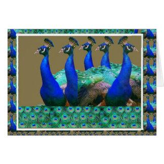 Tyck om:  Påfågel n befjädrar konstdiagram Hälsningskort