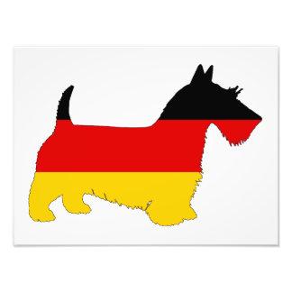 Tysk flagga - skotsk terrier fototryck