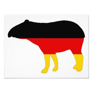 Tysk flagga - Tapir Fototryck