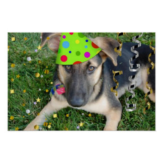 Tysk herde för födelsedagsfest poster