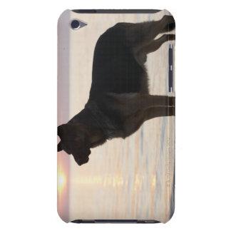 Tysk herdehund på den georgiska fjärden, Ontario, Barely There iPod Skydd