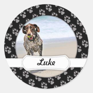 Tysk Shorthaired pekare - Luke - Riley Runt Klistermärke