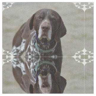 Tysk Shorthaired pekarehund Tyg