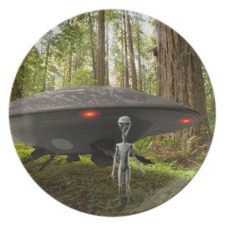 UFO & främlingen i skog pläterar Tallrikar